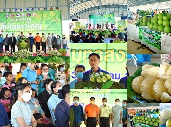 """รก.ผู้อำนวยการ """"สวนสุนันทา"""" ราชภัฏสวนสุนันทา"""" ร่วมเปิดงานเทศกาลส้มโอขาวใหญ่สมุทรสงครามกระตุ้นเศรษฐกิจและสังคมรวมทั้งฟื้นฟูการท่องเที่ยวของจังหวัด ไทยเที่ยวไทย"""